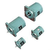 TDY series 70TDY115-1A permanent magnet low speed synchronous motor