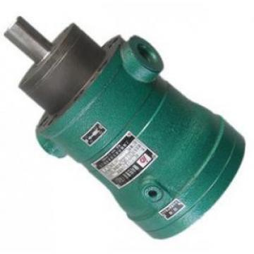 400MCY14-1B  fixed displacement piston pump