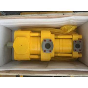 Sumitomo QT2323-6.3-6.3MN-S1162-A Double Gear Pump