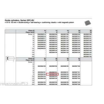 REXROTH 0822065102 PNEUMATIC CYLINDER/LINEAR ACTUATOR Origin NO BOX