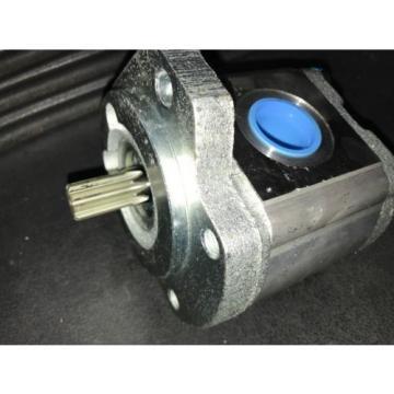 Hydraulic Egypt Singapore Pump Rexroth Gear 9510290040 15W17-7362 NEW
