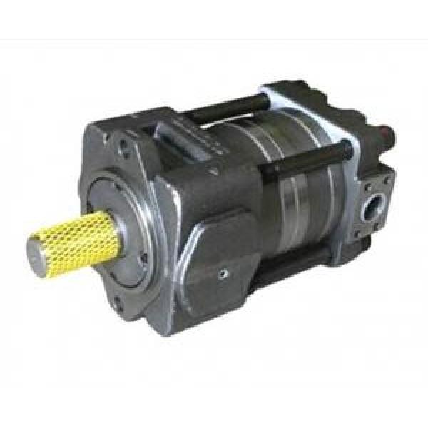 QT63-125E-A Greece QT Series Gear Pump #1 image