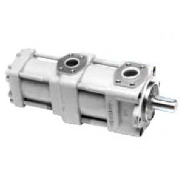 QT6253-125-50F Japan QT Series Double Gear Pump #1 image