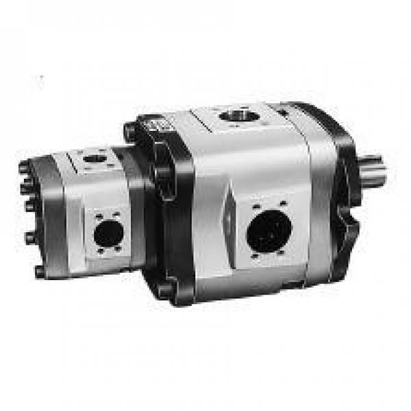 NACHI Australia IPH-35B-13-40-11 IPH Series Double IP Pump #1 image