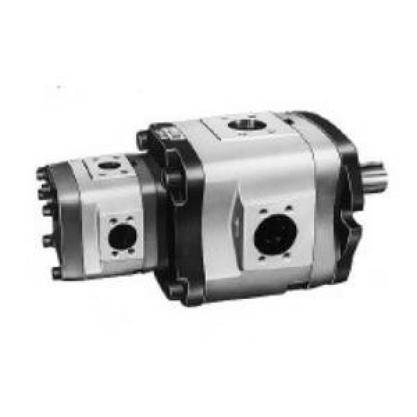 NACHI Canada IPH-23B-3.5-13-11  IPH Series Double IP Pump #1 image