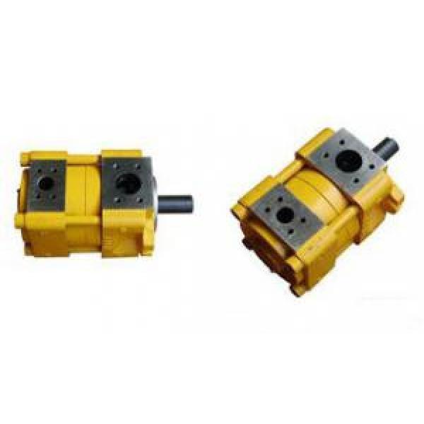 Sumitomo Canada QT Series Gear Pump QT63-125F-A #1 image