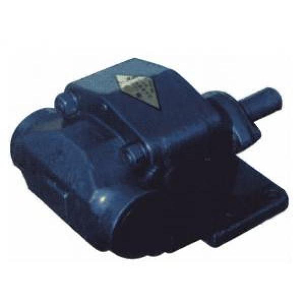BCB USA Series Gear Oil Pump BCB-160/1.6 #1 image