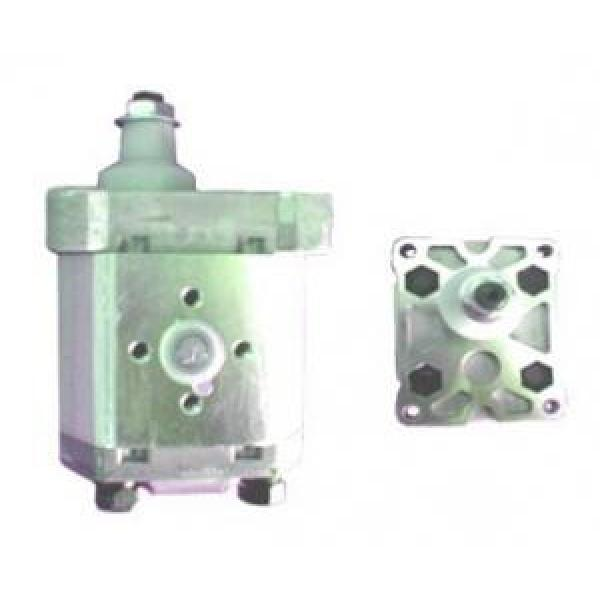 Atos Korea PFG-1 fixed displacement pump #1 image