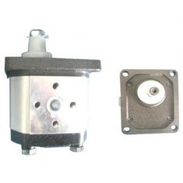 Atos Greece PFG-2 fixed displacement pump #1 image