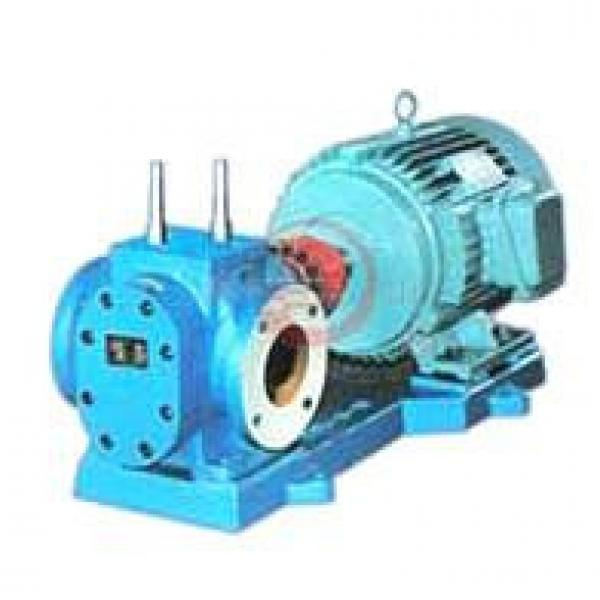 RCB India Series Insulation Gear Pumps #1 image