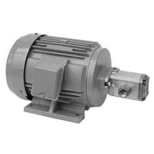 Daikin MFP100/3.8-2-0.75-10  MFP100 Series Motor Pump #1 image