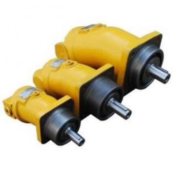A2F10W2S2 A2F Series Fixed Displacement Piston Pump #1 image