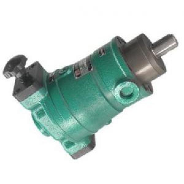 63SCY14-1B  axial plunger pump #1 image