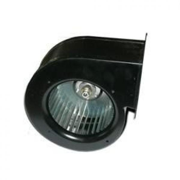FLJ Series 100FLJ2 AC Centrifugal Blower/Fan #1 image