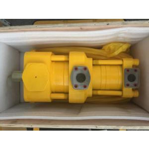 Sumitomo QT6222-100-6.3F Double Gear Pump #1 image
