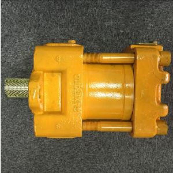 Sumitomo QT Series Single Gear Pump #3 image