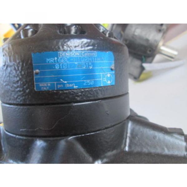 Motore Idraulico Denison Calzoni MR160C #2 image