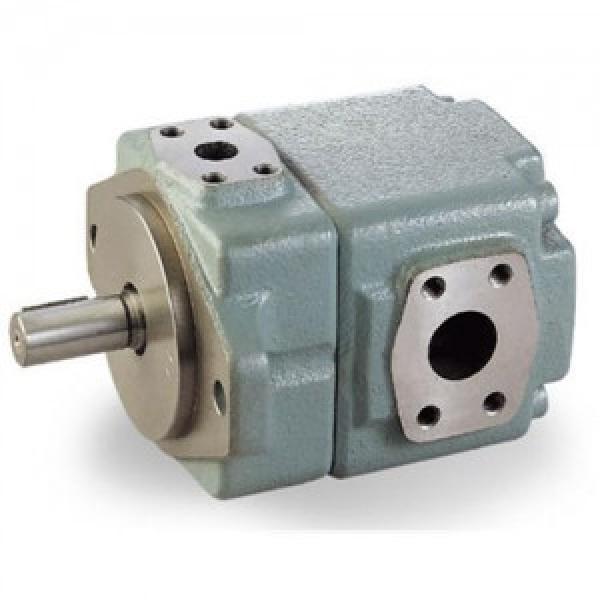 T6CC Quantitative vane pump T6CC-028-006-1R00-C100 #1 image