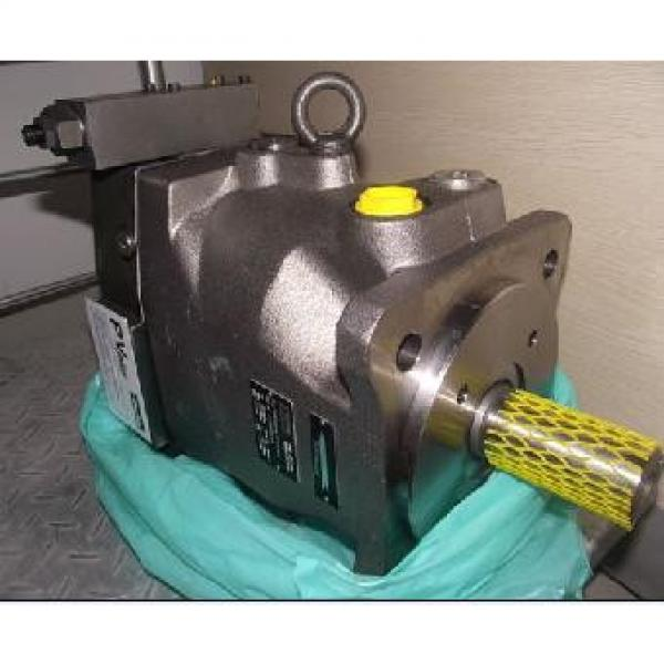 Plunger PV series pump PV20-2L1D-J02 #1 image