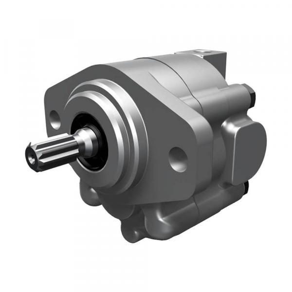 Parker Piston Pump 400481002926 PV140R1K1T1NFPG+PVAPVV41 #2 image