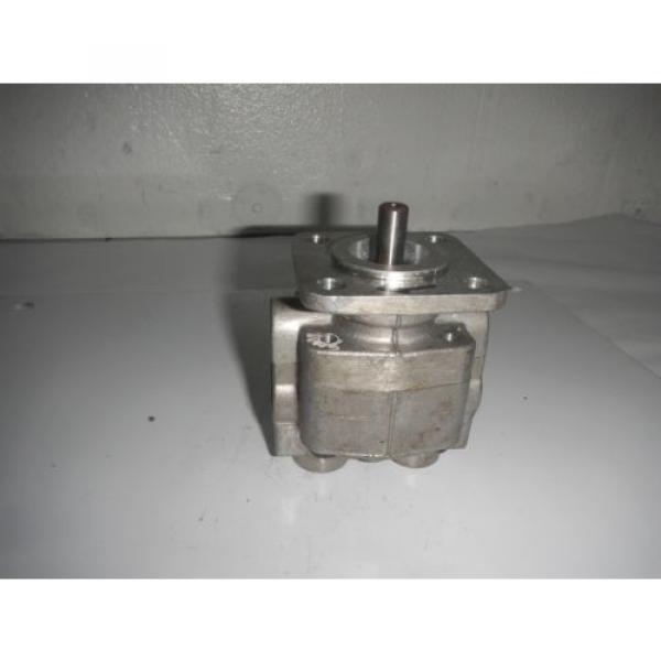 Rexroth India Greece P19FS21R Gear Hydraulic Pump #1 image