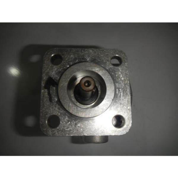 Rexroth India Greece P19FS21R Gear Hydraulic Pump #3 image