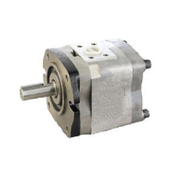 origin NACHI #034;HYD#034; Hydraulic pump IPH-3B-13-20 #1 image